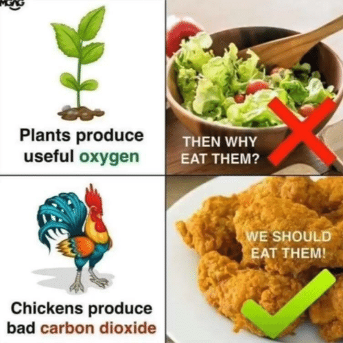 carbon dioxide: Plants produceT  useful oxygen  THEN WHY  EAT THEM?  E SHOULD  EAT THEM!  Chickens produce  bad carbon dioxide