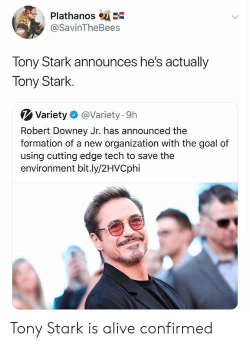 Organization: PlathanosE  @SavinTheBees  Tony Stark announces he's actually  Tony Stark  Variety  @Variety 9h  Robert Downey Jr. has announced the  formation of a new organization with the goal of  using cutting edge tech to save the  environment bit.ly/2HVCphi Tony Stark is alive confirmed