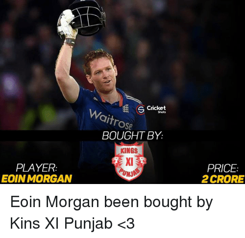 Memes, Cricket, and Rose: PLAYER  EOIN MORGAN  S Cricket  rose  BOUGHT BY.  KINGS  PRICE  2CRORE Eoin Morgan been bought by Kins XI Punjab <3