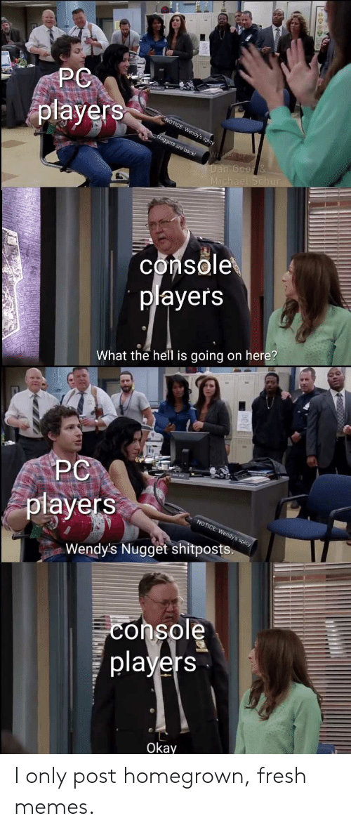 What The Hell Is Going On Here: players  Michae  console  players  What the hell is going on here?  PC  players  Wendy's Nugget shitposts.  console  players  Okay I only post homegrown, fresh memes.