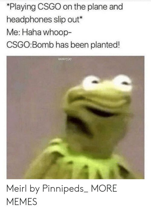 "whoop: ""Playing CSGO on the plane and  headphones slip out*  Me: Haha whoop-  CSGO:Bomb has been planted!  ocravy)a)y Meirl by Pinnipeds_ MORE MEMES"
