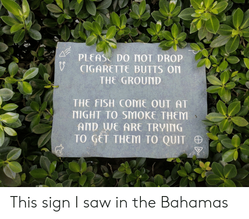 the bahamas: PLEAS DO MOT DROP  CIGARETTE BUTTS On  THE GROUND  THE FISH COME OUT AT  NIGHT TO SMOKE THEM  AND WE ARE TRVING  TO GET THEM TO QUIT This sign I saw in the Bahamas