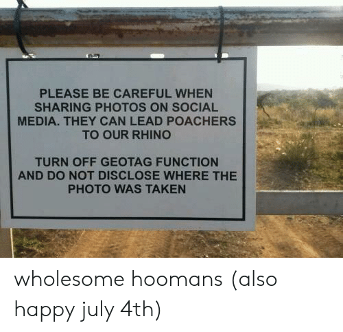 Hoomans: PLEASE BE CAREFUL WHEN  SHARING PHOTOS ON SOCIAL  MEDIA. THEY CAN LEAD POACHERS  TO OUR RHINO  TURN OFF GEOTAG FUNCTION  AND DO NOT DISCLOSE WHERE THE  PHOTO WAS TAKEN wholesome hoomans (also happy july 4th)