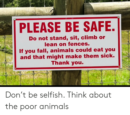 Be Safe: PLEASE BE SAFE.  Do not stand, sit, climb or  lean on fences.  If you fall, animals could eat you  and that might make them sick.  Thank you. Don't be selfish. Think about the poor animals