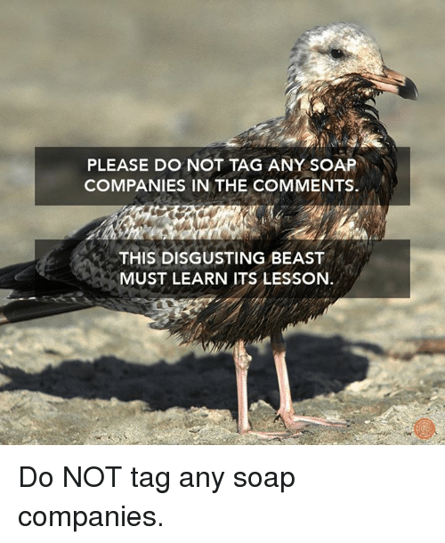 Dank, 🤖, and Learn-It: PLEASE DO NOT TAG ANY SOAP  COMPANIES IN THE COMMENTS.  THIS DISGUSTING BEAST  MUST LEARN ITS LESSON. Do NOT tag any soap companies.