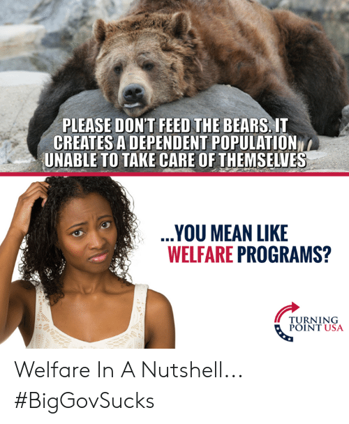 turning point: PLEASE DON'T FEED THE BEARS, IT  CREATES A DEPENDENT POPULATION  UNABLE TO TAKE CARE OF THEMSELVES  YOU MEAN LIKE  WELFARE PROGRAMS?  TURNING  POINT USA Welfare In A Nutshell... #BigGovSucks