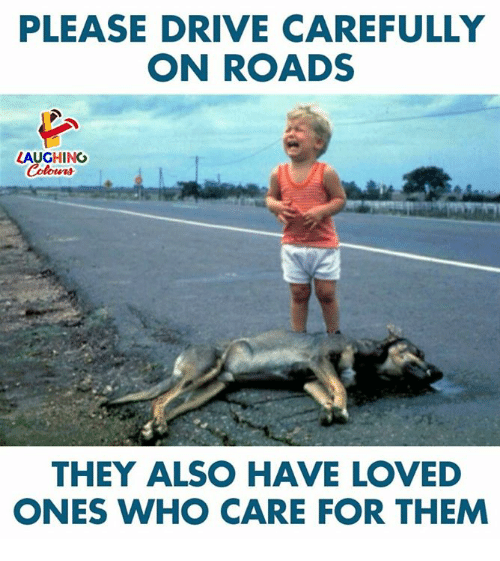 Drive, Indianpeoplefacebook, and Who: PLEASE DRIVE CAREFULLY  ON ROADS  LAUGHING  Colour  THEY ALSO HAVE LOVED  ONES WHO CARE FOR THEM