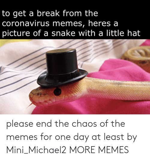 mini: please end the chaos of the memes for one day at least by Mini_Michael2 MORE MEMES
