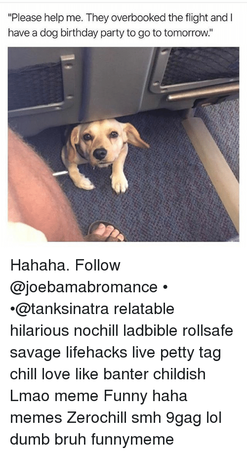 "9gag, Birthday, and Bruh: ""Please help me. They overbooked the flight and I  have a dog birthday party to go to tomorrow. Hahaha. Follow @joebamabromance • •@tanksinatra relatable hilarious nochill ladbible rollsafe savage lifehacks live petty tag chill love like banter childish Lmao meme Funny haha memes Zerochill smh 9gag lol dumb bruh funnymeme"