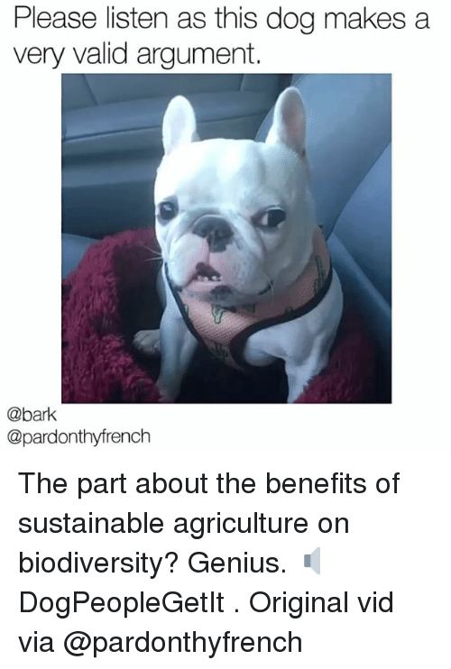 Memes, Genius, and 🤖: Please listen as this dog makes a  very valid argument.  @bark  @pardonthyfrench The part about the benefits of sustainable agriculture on biodiversity? Genius. 🔈 DogPeopleGetIt . Original vid via @pardonthyfrench