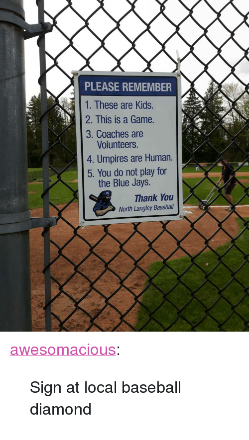 "Baseball, Tumblr, and Thank You: PLEASE REMEMBER  1. These are Kids.  2. This is a Game.  3. Coaches are  Volunteers.  4. Umpires are Human.  5. You do not play for  the Blue Jays.  Thank You  North Langley Baseball <p><a href=""http://awesomacious.tumblr.com/post/173418607565/sign-at-local-baseball-diamond"" class=""tumblr_blog"">awesomacious</a>:</p>  <blockquote><p>Sign at local baseball diamond</p></blockquote>"