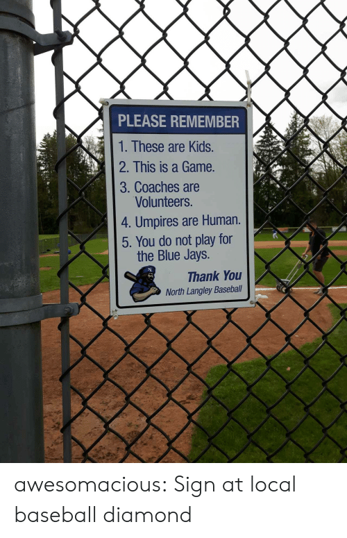 Blue Jays: PLEASE REMEMBER  1. These are Kids.  2. This is a Game.  3. Coaches are  Volunteers.  4. Umpires are Human.  5. You do not play for  the Blue Jays.  Thank You  North Langley Baseball awesomacious:  Sign at local baseball diamond