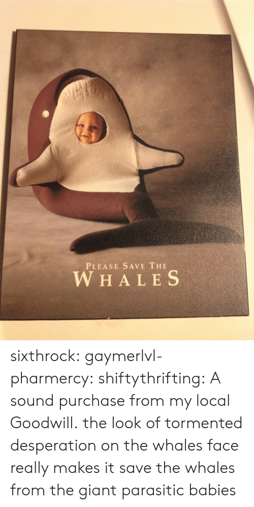 tormented: PLEASE SAVE THE  W HALES sixthrock: gaymerlvl-pharmercy:  shiftythrifting:  A sound purchase from my local Goodwill.  the look of tormented desperation on the whales face really makes it   save the whales from the giant parasitic babies
