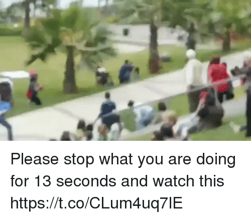 Watch, Watches, and Relatable: Please stop what you are doing for 13 seconds and watch this https://t.co/CLum4uq7lE