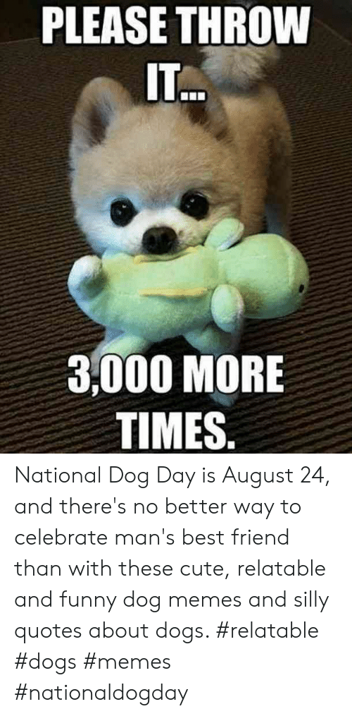 Silly Quotes: PLEASE THROW  ITO  3,000 MORE  TIMES. National Dog Day is August 24, and there's no better way to celebrate man's best friend than with these cute, relatable and funny dog memes and silly quotes about dogs.  #relatable #dogs #memes #nationaldogday