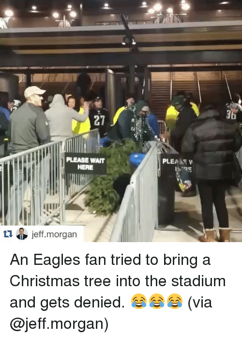 Christmas, Sports, and Christmas Tree: PLEASE WAIT  HERE  tu O jeff morgan  PLEASE W An Eagles fan tried to bring a Christmas tree into the stadium and gets denied. 😂😂😂 (via @jeff.morgan)