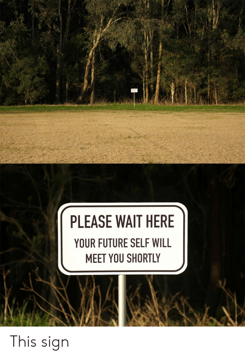 please wait: PLEASE WAIT HERE  YOUR FUTURE SELF WILL  MEET YOU SHORTLY This sign