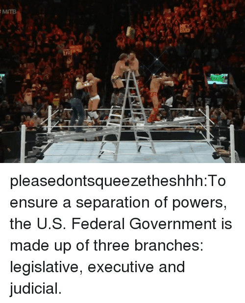 federal government: pleasedontsqueezetheshhh:To ensure a separation of powers, the U.S. Federal Government is made up of three branches: legislative, executive and judicial.