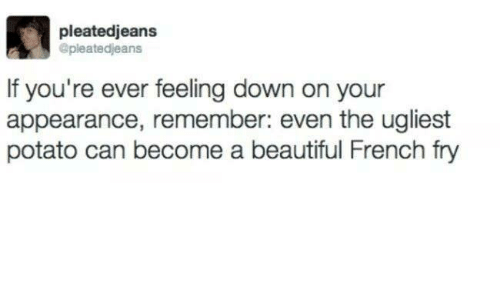 memes: pleatedjeans  @pleatedjeans  If you're ever feeling down on your  appearance, remember: even the ugliest  potato can become a beautiful French fry