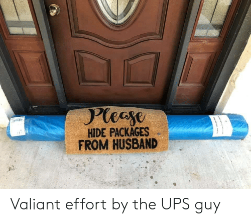 packages: Pleeye  HIDE PACKAGES  FROM HUSBAND Valiant effort by the UPS guy