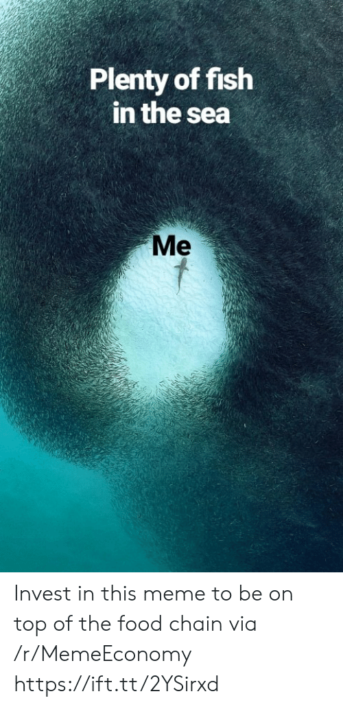 Plenty of Fish: Plenty of fish  in the sea  Me Invest in this meme to be on top of the food chain via /r/MemeEconomy https://ift.tt/2YSirxd