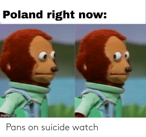 On Suicide Watch: Poland right now:  imgflip.com Pans on suicide watch