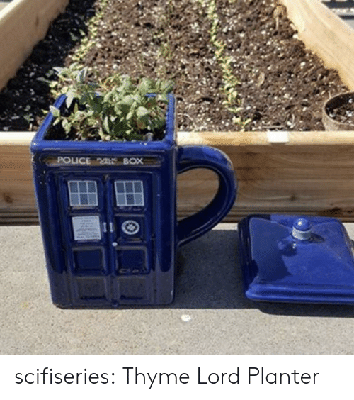 police box: POLICE BOX scifiseries:  Thyme Lord Planter