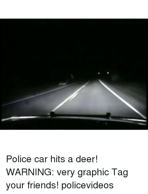 cars: Police car hits a deer! WARNING: very graphic Tag your friends! policevideos