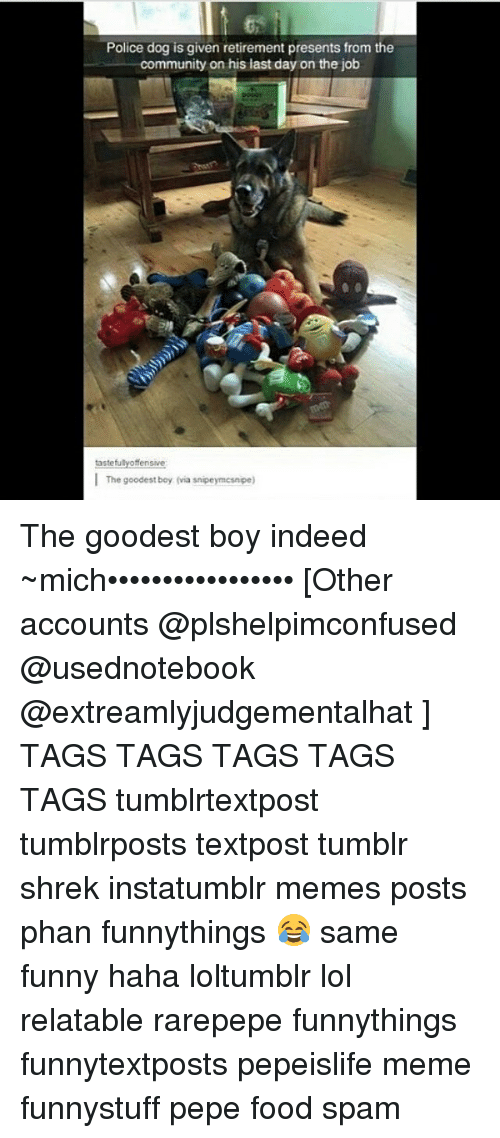 Community, Memes, and Shrek: Police dog is given retirement presents from the  community on his last day on the job  tasteful  fensive  I The goodest boy (via snipeymcsnpe) The goodest boy indeed ~mich••••••••••••••••• [Other accounts @plshelpimconfused @usednotebook @extreamlyjudgementalhat ] TAGS TAGS TAGS TAGS TAGS tumblrtextpost tumblrposts textpost tumblr shrek instatumblr memes posts phan funnythings 😂 same funny haha loltumblr lol relatable rarepepe funnythings funnytextposts pepeislife meme funnystuff pepe food spam