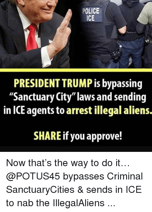 "Memes, 🤖, and Ice: POLICE  ICE  PRESIDENTTRUMP is bypassing  ""Sanctuary City""laws and sending  in ICE agents to arrest illegal aliens.  SHARE if you approve! Now that's the way to do it… @POTUS45 bypasses Criminal SanctuaryCities & sends in ICE to nab the IllegalAliens ..."