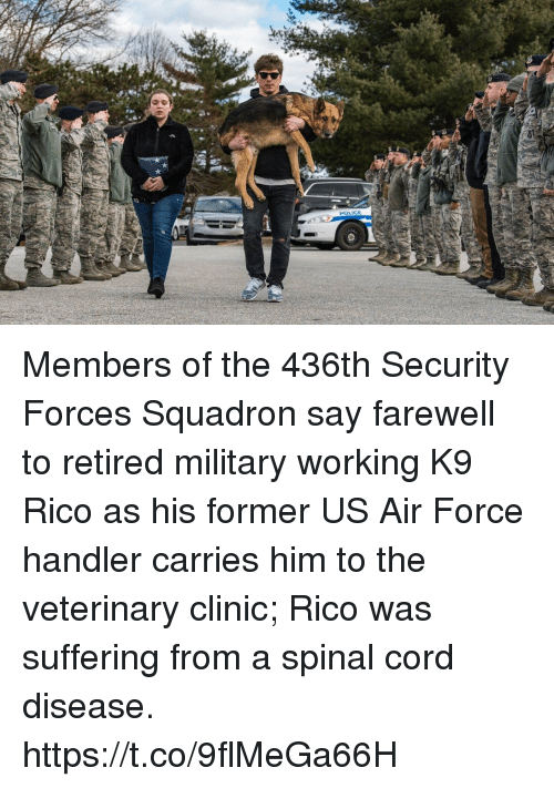 Memes, Police, and Air Force: POLICE Members of the 436th Security Forces Squadron say farewell to retired military working K9 Rico as his former US Air Force handler carries him to the veterinary clinic; Rico was suffering from a spinal cord disease. https://t.co/9flMeGa66H