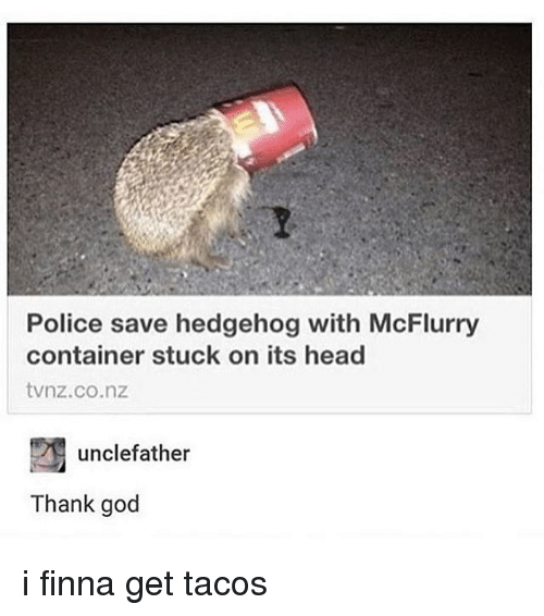 Hedgehoging: Police save hedgehog with McFlurry  container stuck on its head  tvnz.co.nz  unclefather  Thank god i finna get tacos