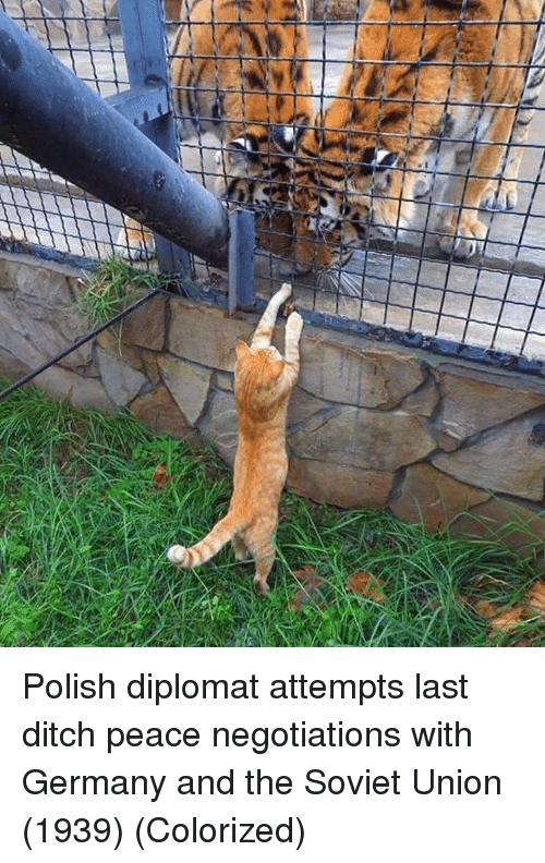 diplomat: Polish diplomat attempts last ditch peace negotiations with Germany and the Soviet Union (1939) (Colorized)