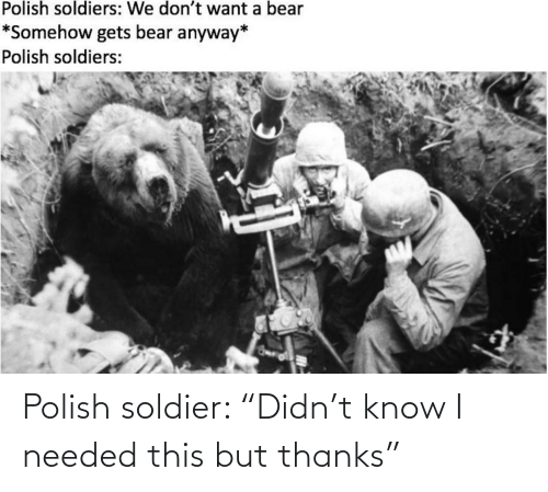 "soldier: Polish soldier: ""Didn't know I needed this but thanks"""