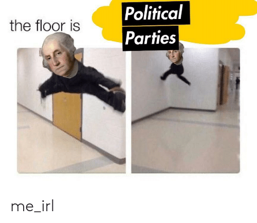 political parties: Political  Parties  the floor is me_irl