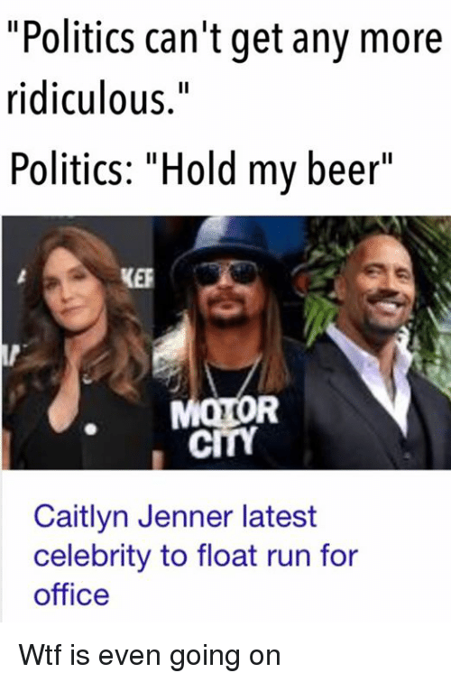 celebrity politics In the book celebrity politics, darryl m west and john m orman point out that  celebrities aren't far from politics to begin with politicians are.