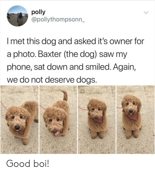 baxter: polly  @pollythompsonn_  I met this dog and asked it's owner for  a photo. Baxter (the dog) saw my  phone, sat down and smiled. Again,  we do not deserve dogs Good boi!