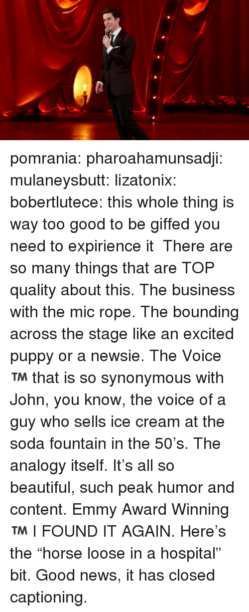 """emmy: pomrania:  pharoahamunsadji:  mulaneysbutt:  lizatonix:  bobertlutece:  this whole thing is way too good to be giffed you need to expirience it  There are so many things that are TOP quality about this. The business with the mic rope. The bounding across the stage like an excited puppy or a newsie. The Voice™️ that is so synonymous with John, you know, the voice of a guy who sells ice cream at the soda fountain in the 50's. The analogy itself. It's all so beautiful, such peak humor and content.   Emmy Award Winning™️  I FOUND IT AGAIN.  Here's the """"horse loose in a hospital"""" bit. Good news, it has closed captioning."""