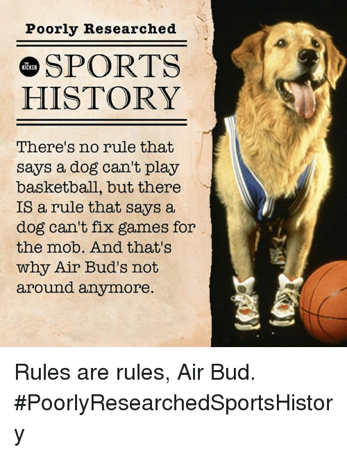 There S No Rule That Says A Dog Can T Play Basketball