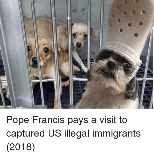 Pope Francis: Pope Francis pays a visit to captured US illegal immigrants (2018)