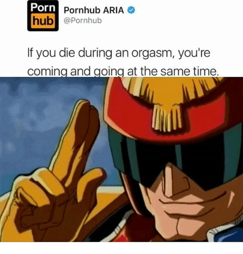 Memes, Porn Hub, and Pornhub: Porn  hub  Pornhub ARIA  @Pornhub  If you die during an orgasm, you're  coming and going at the same time