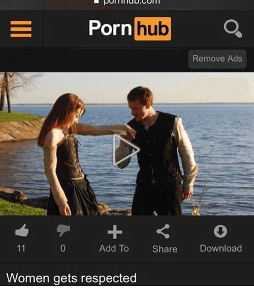 Memes, Porn Hub, and Porn: Porn hub  Remove Ads  Add To Share Download  Women gets respected