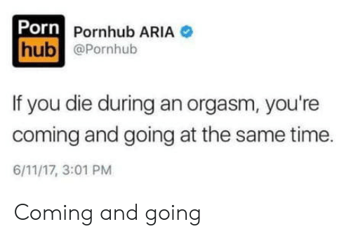 at the same time: Porn Pornhub ARIA  hub @Pornhub  If you die during an orgasm, you're  coming and going at the same time  6/11/17, 3:01 PM Coming and going