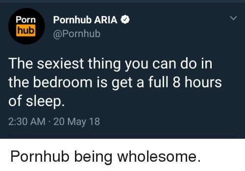 Pornhub, Porn, and Wholesome: Porn Pornhub ARIA  hub @Pornhub  The sexiest thing you can do in  the bedroom is get a full 8 hours  of sleep  2:30 AM 20 May 18 <p>Pornhub being wholesome.</p>