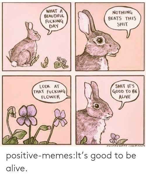 Alive: positive-memes:It's good to be alive.