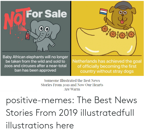 Stories: positive-memes:    The Best News Stories From 2019 illustratedfull illustrations here