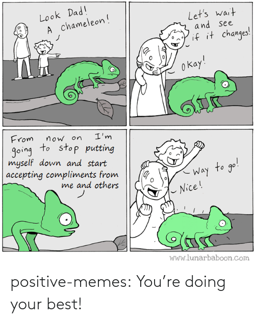 Your: positive-memes:  You're doing your best!