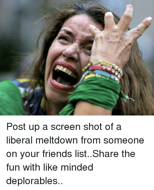 memes: Post up a screen shot of a liberal meltdown from someone on your friends list..Share the fun with like minded deplorables..