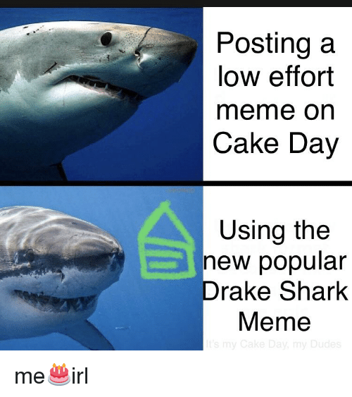 shark meme: Posting a  low effort  meme on  Cake Day  Using the  new popular  Drake Shark  Meme  ud