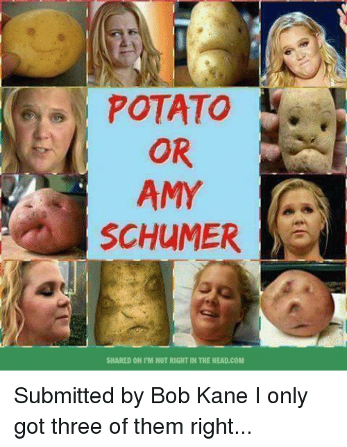 Memes, Potato, and 🤖: POTATO  OR  AMY  SHARED ON IM NOT RIGHT IN THE HEAD.COM Submitted by Bob Kane  I only got three of them right...